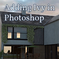 adding ivy in photoshop