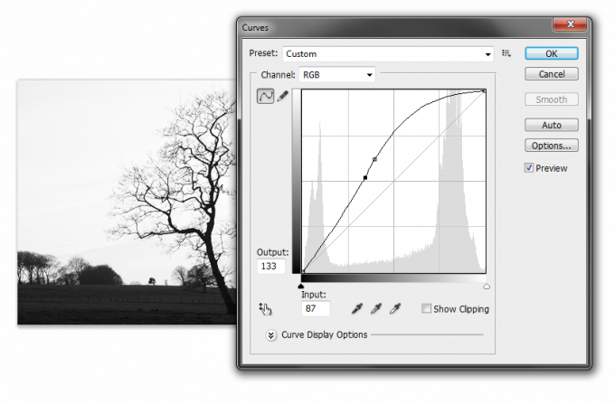 adjust curves in photoshop